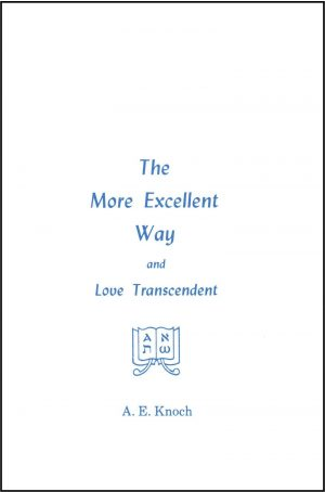 The More Excellent Way and Love Transcendent